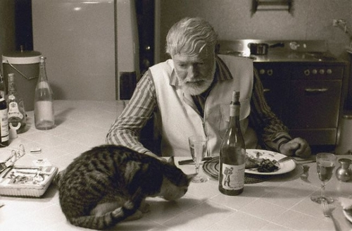 Hemingway and his cat