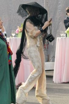 Lady Gaga Beekeeper costume