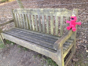 Elmo on Bench
