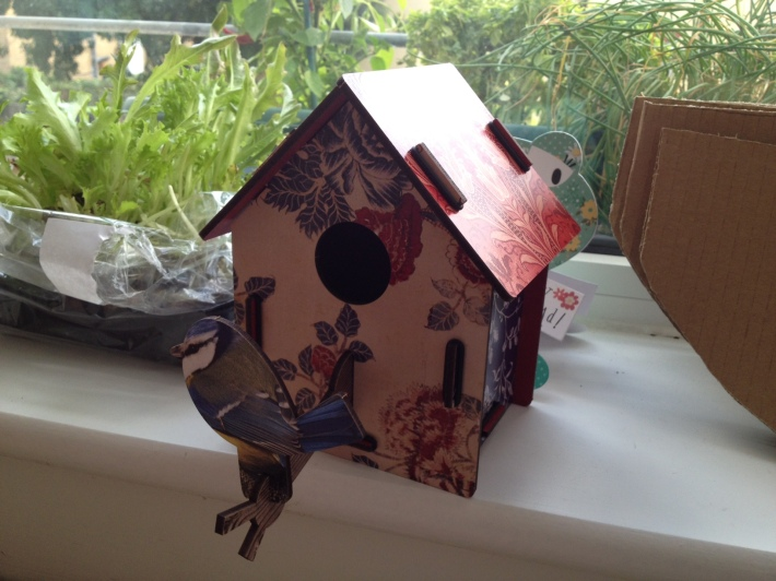 MIHO Unexpected Bird House